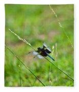 Dragon Fly 5 Fleece Blanket