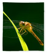 Dragon Fly On Grass Fleece Blanket