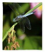 Dragon Fly Fleece Blanket