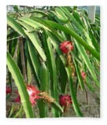 Dragon Fruit Tree Fleece Blanket