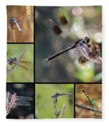 Dragonflies On Twigs Collage Fleece Blanket