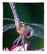 Dragonfly Close Up Fleece Blanket