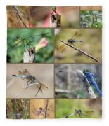 Dragonfly Collage 3 Fleece Blanket