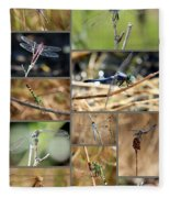 Dragonfly Collage Fleece Blanket