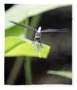 Dragonfly Dimensions Fleece Blanket
