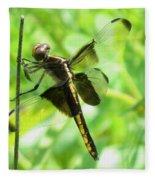Dragonfly Female Widow Skimmer Fleece Blanket