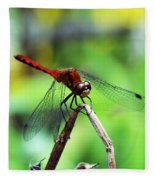 Dragonfly Hard At Work Fleece Blanket