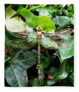 Dragonfly In An English Garden Fleece Blanket