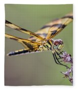The Halloween Pennant Dragonfly Fleece Blanket