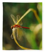 Dragonfly On A Summer Day Fleece Blanket