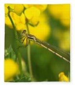 Dragonfly On Birds-foot Trefoil Fleece Blanket