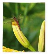 Dragonfly On Bud Fleece Blanket