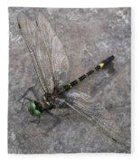 Dragonfly On Rock Fleece Blanket