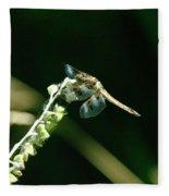 Dragonfly Resting In The Wind  Fleece Blanket