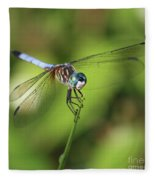 Dragonfly Square Fleece Blanket