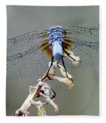 Dragonfly Wing Details II Fleece Blanket