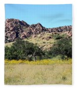 Dragoon Mountains Fleece Blanket