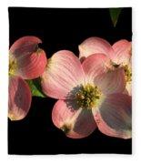 Dramatic Dogwood Flowers Fleece Blanket