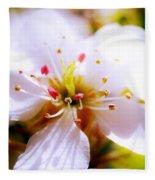 Dreamy Cherry Blossom Fleece Blanket