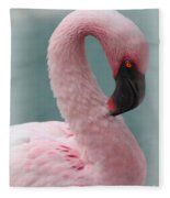Dreamy Pink Flamingo Fleece Blanket