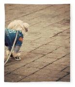 Dressed Up Dog Fleece Blanket