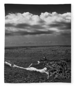 Driftwood On The Beach At Whitefish Point Fleece Blanket