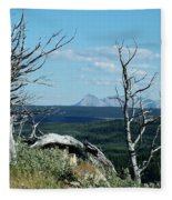 Gnarled Trees And Divide Mountain Fleece Blanket