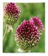 Drumstick Allium Fleece Blanket