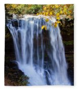 Dry Falls North Carolina Fleece Blanket