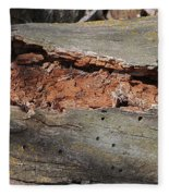 Dry Rotting Tree Fleece Blanket