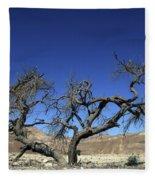 Dry Solitary Tree  Fleece Blanket