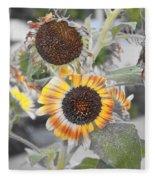 Dry Sunflowers Fleece Blanket