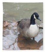 Duck Wading In A Stream Fleece Blanket