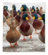 Duckorama Fleece Blanket