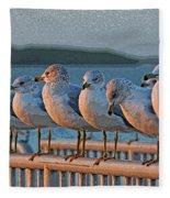 Ducks In A Row Fleece Blanket