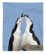 Duet Fleece Blanket