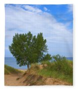 Dune - Indiana Lakeshore Fleece Blanket