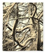 Snow Dusted Limbs Fleece Blanket
