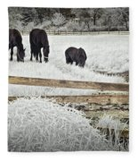 Dutch Friesian Horses Behind A Wooden Fence In A Pasture Fleece Blanket