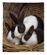 Dutch Rabbit With Young Fleece Blanket by E A Janes