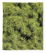 Dwarf Evergreen Fleece Blanket