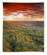 D.wiggett View Of Dry Island, Buffalo Fleece Blanket