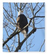 Bald Eagle Sunny Perch Fleece Blanket