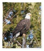 Eagle 1979 Fleece Blanket