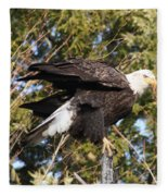Eagle 1982 Fleece Blanket