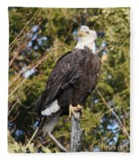 Eagle 1985 Fleece Blanket