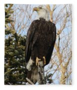 Eagle 1991a Fleece Blanket