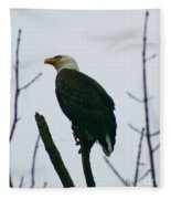 Eagle 3940 Fleece Blanket
