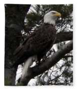 Eagle 9786 Fleece Blanket
