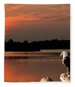 Eagle On Stump Overlooking Water At Sundown Fleece Blanket